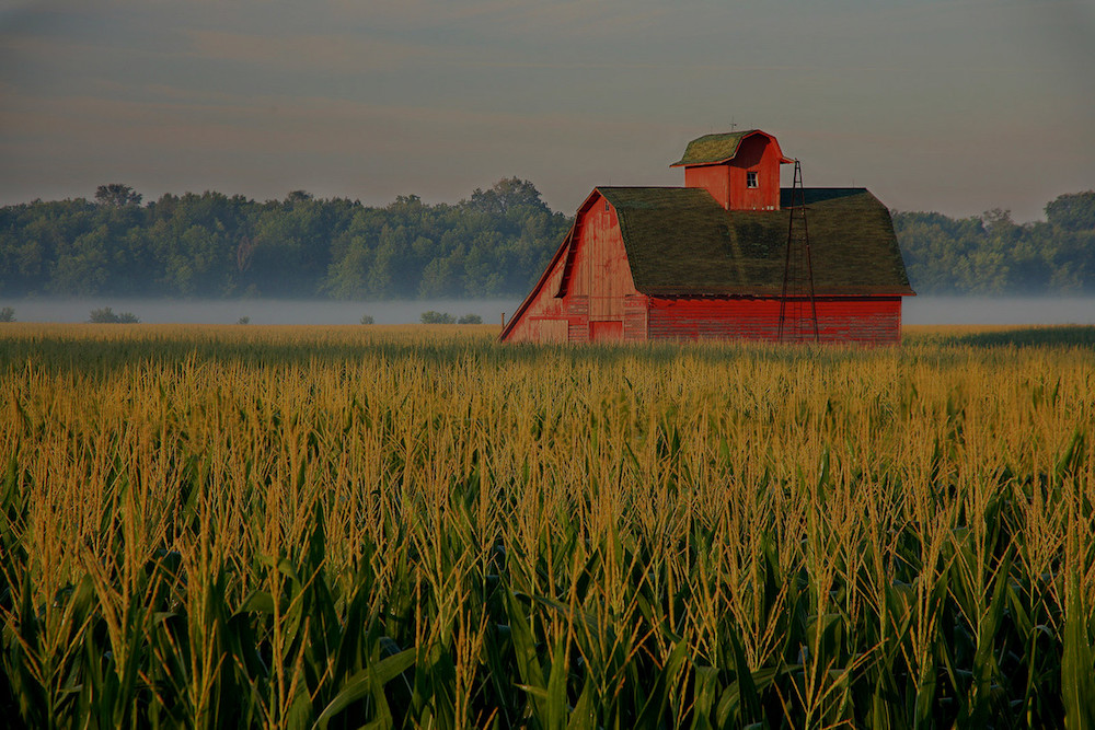 farm and crop insurance in St. Louis  MO | LP Miceli